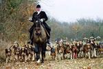 Королевская охота во Франции