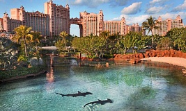 Royal Tower Atlantis, Paradise Island
